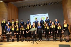 edukacinis-projektas-dainuoju-chore-2